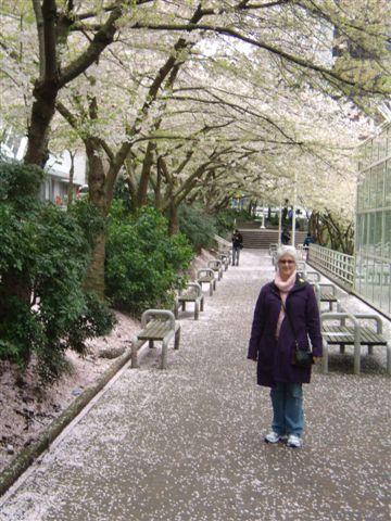 2011-04-16_045